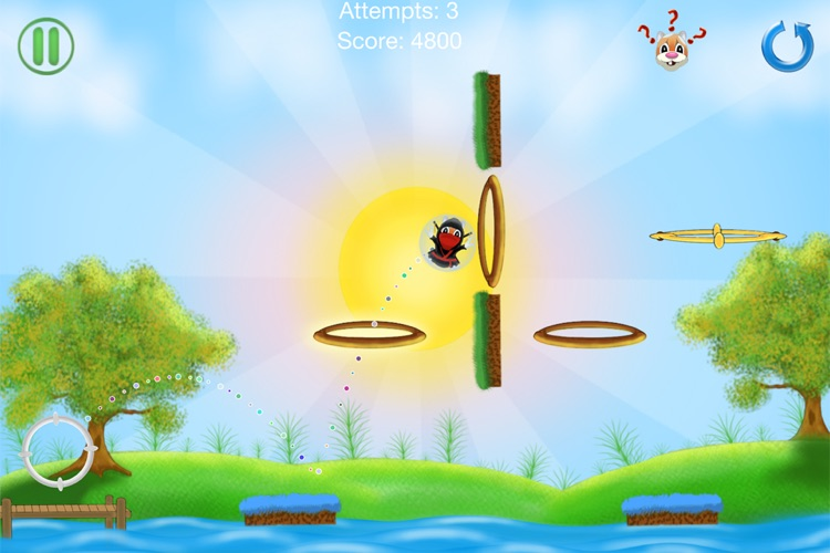 Hamster Craze screenshot-2