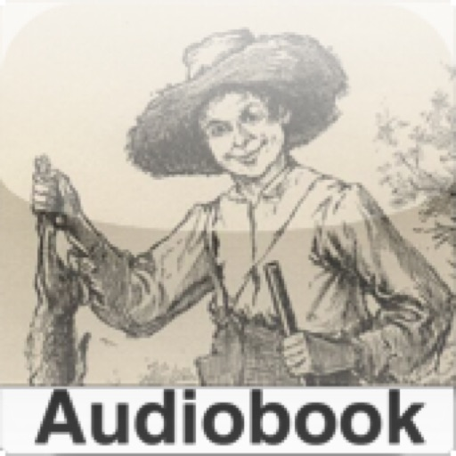 Adventures of Huckleberry Finn ( Audiobook + Text )