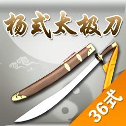 杨式太极刀-36式,武术名家讲解示范