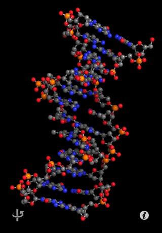 Molecules screenshot one