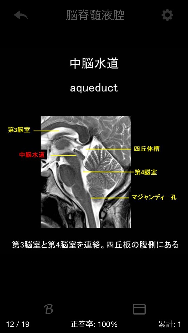 e画像解剖のおすすめ画像4
