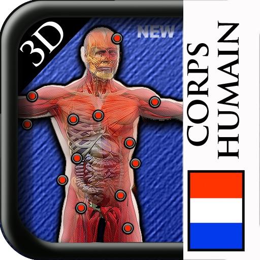 Corpus Human Anatomie 3D