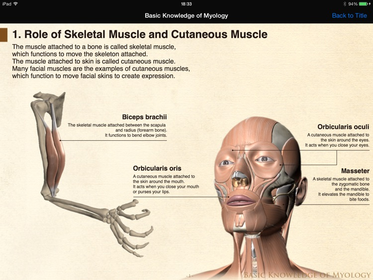DS ANATOMY HEAD & NECK screenshot-3