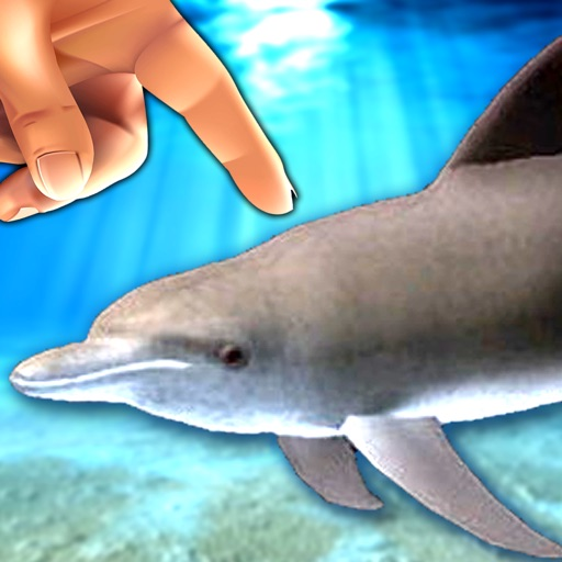 Dolphin Fingers! 3D Interactive Aquarium