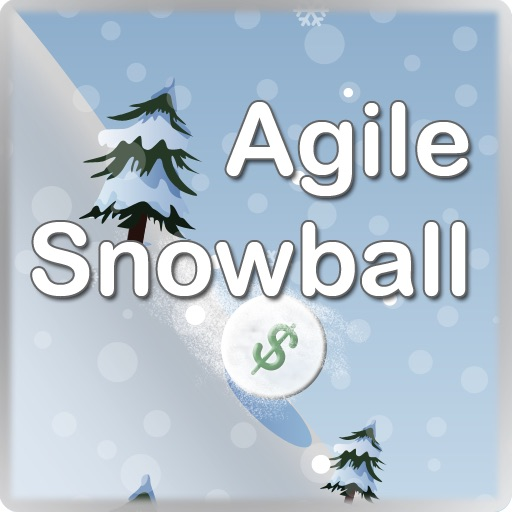 Agile Snowball: Debt Simplified