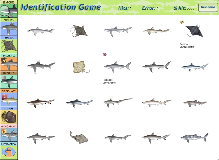 Sharks & Rays - Identification Guide for iPad screenshot-3