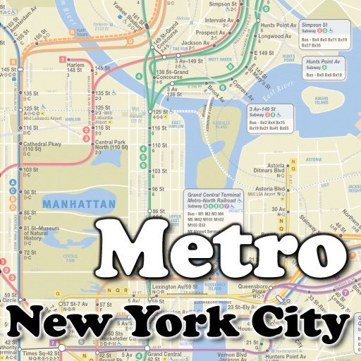 Metro New York City