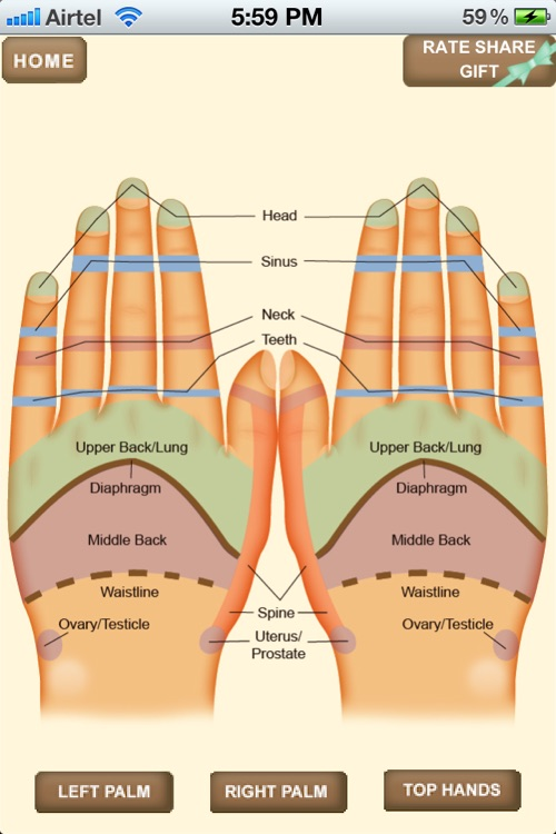 iPocket Hand Reflexology screenshot-3