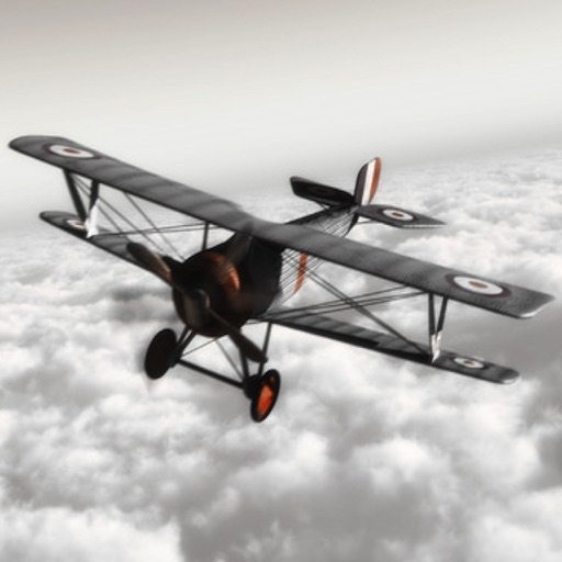 WW1 Fighter 3D - Take out your bullets against the foe!