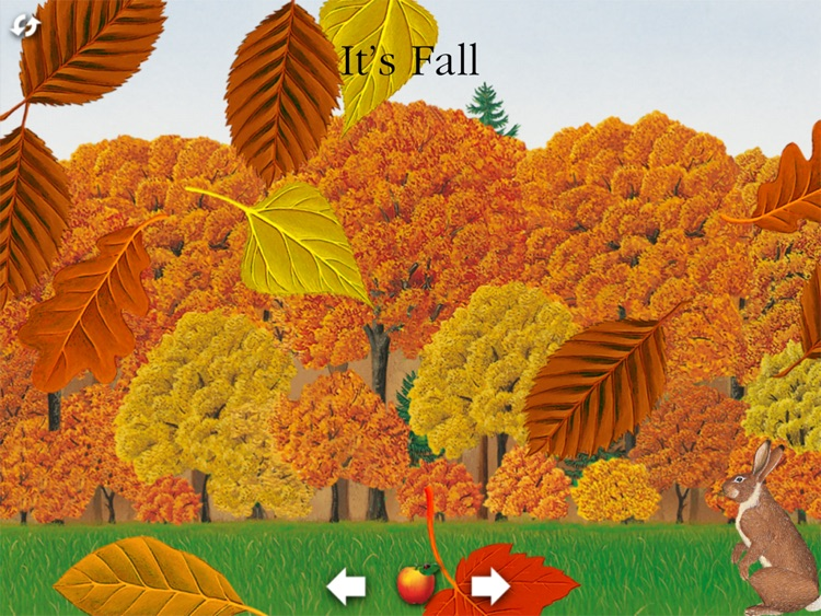 Scholastic First Discovery: The Forest for iPad screenshot-4