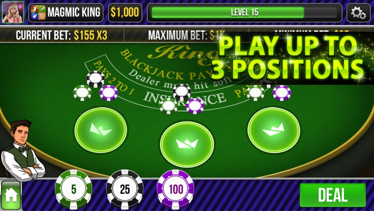 Blackjack King screenshot-1