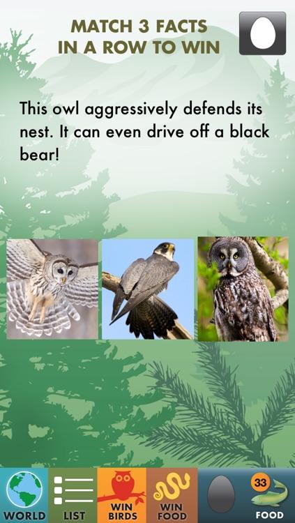 My Birds of Prey screenshot-3
