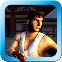 Hack Zen Warrior