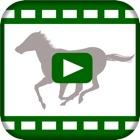 競馬レース for 競馬予想会社 icon