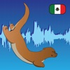 Learn Spanish with speech recognition - Otterwave