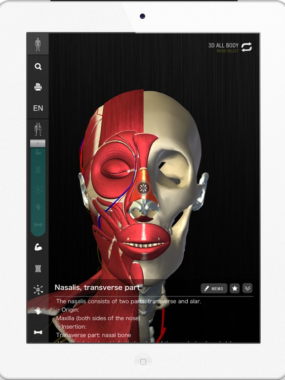 teamLabBody -3D Motion Human Anatomy Lite (Head and Neck)-