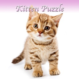 Kitten Slider Puzzle HD