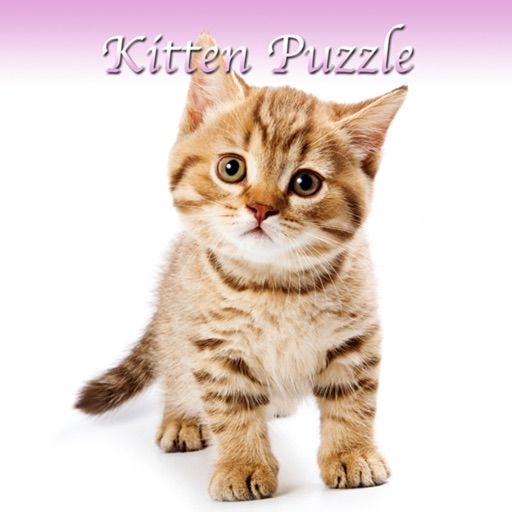 Kitten Slider Puzzle HD