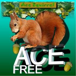 Ace Squirrel Nut Catcher FREE Version.