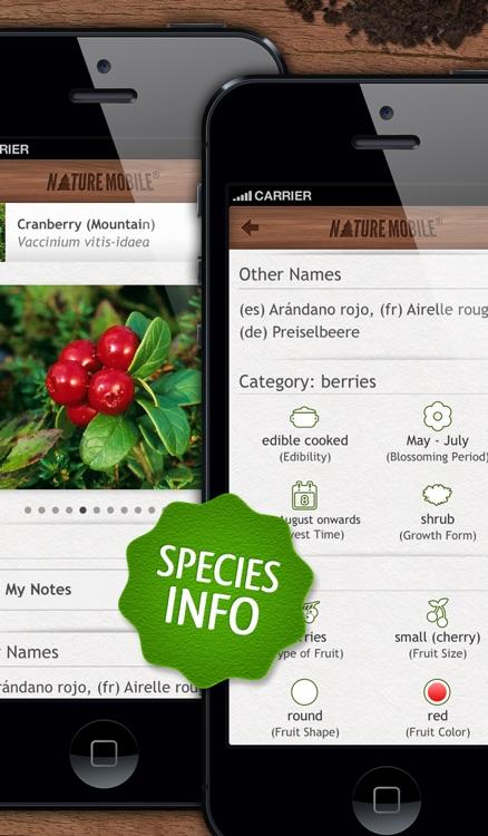 Wild Berries & Herbs - NATURE MOBILE screenshot-4