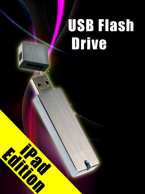 USB Flash Drive for iPad