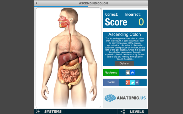 ‎Anatomy Game Anatomicus Screenshot
