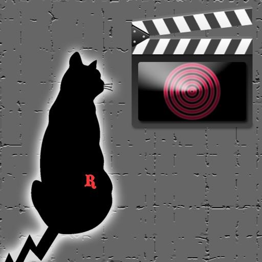 RockCat Video