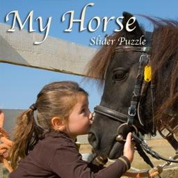 Pony Puzzle 2