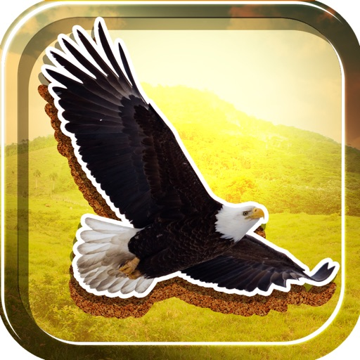 American Eagles Slide Puzzle Free Game icon