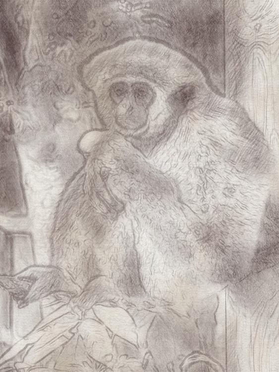 PhotoArtistaHD - Sketch screenshot-4