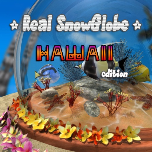 Real SnowGlobe Hawaii