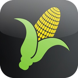 Corn Yield Calculator
