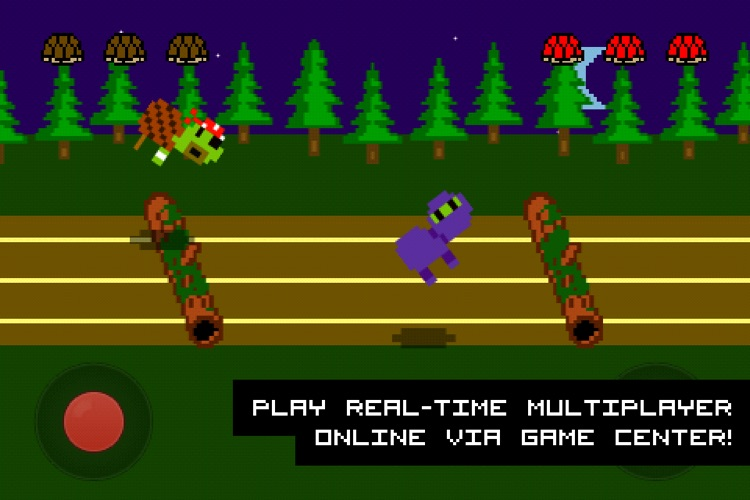 Hurdle Turtle screenshot-4
