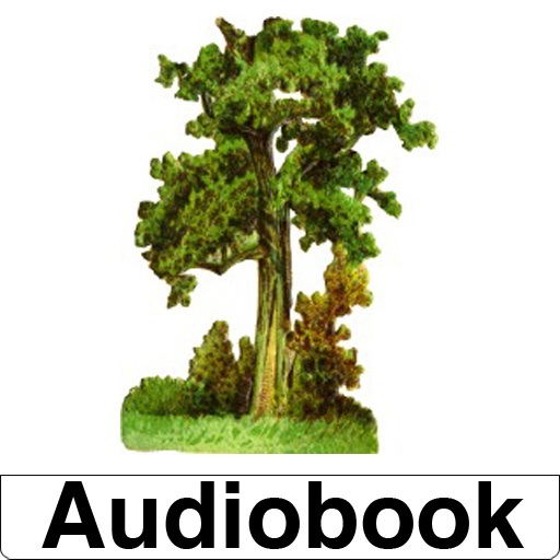 Audiobook-Walden