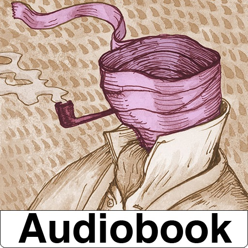 Audiobook-Invisible Man