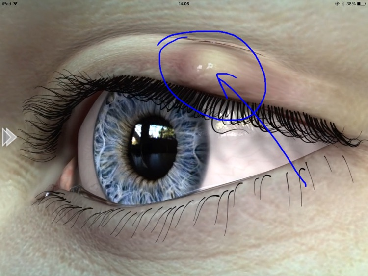 EyeDraw Lite screenshot-3