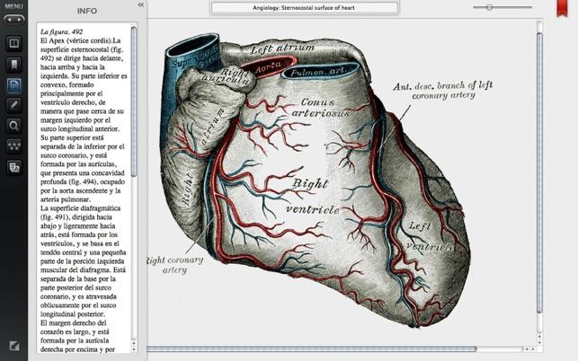 Grises Premium Edition Anatomia en Mac App Store