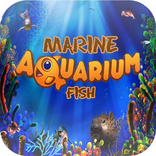 Marine Aquarium Fish Species