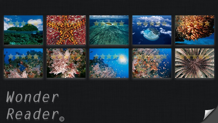 Guide To Tropical Marine Fish 4