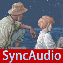 SyncAudioBook-The Adventures of Huckleberry Finn (Classic Collection)