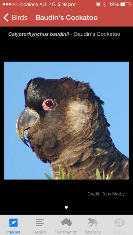 Field Guide to Western Australian Fauna screenshot-3