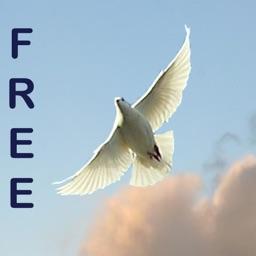 Ephesians 1 Personalised (Free)
