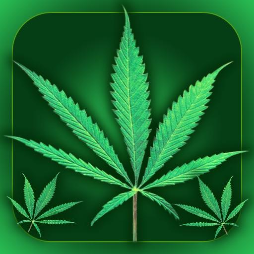 Weed Yo Screen Free