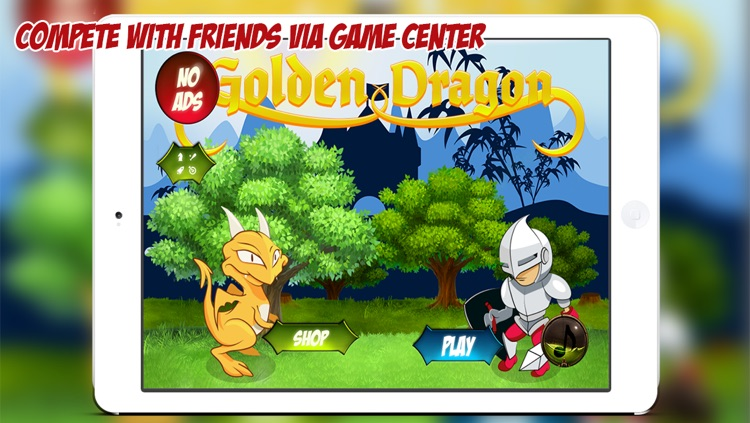 Golden Dragon - Knights & Dragons