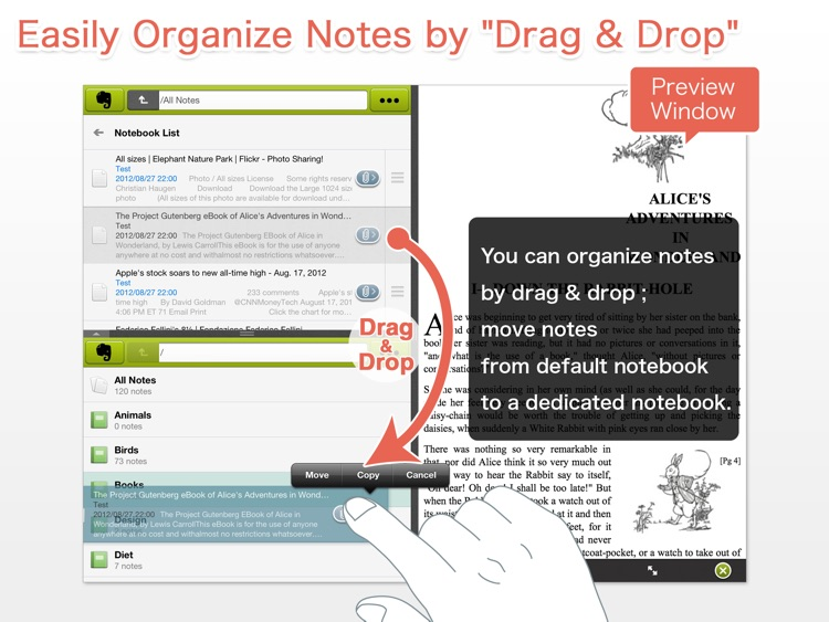 EverCrane for iPad - FileCrane for Evernote
