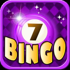 Activities of Bingo Master Deluxe Casino - HD Free