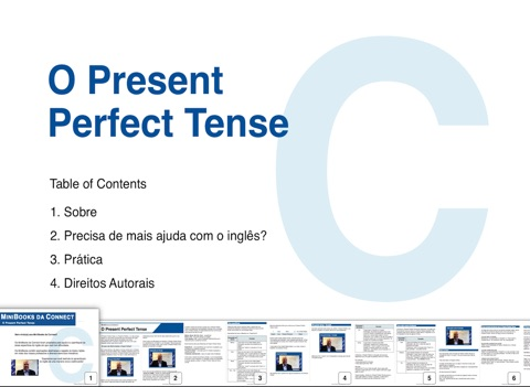 Perfect Tense Software