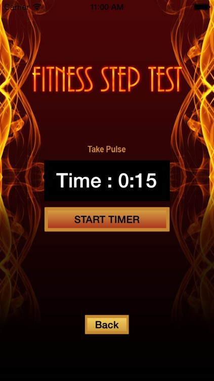 Fitness Step Test- VO2max screenshot-3