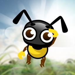 Explo Bee