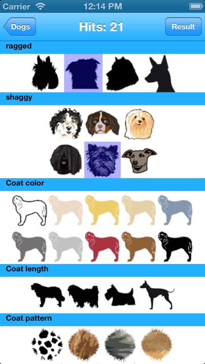 Dogs Info screenshot-3